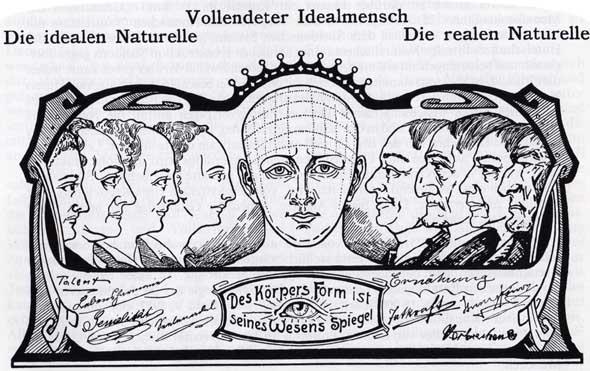 Gesichtsmerkmale physiognomie Gesichtsdiagnose